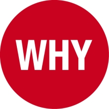 WHY-Logo-Symbol