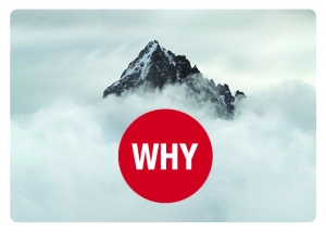 WHY-postcard-front-B